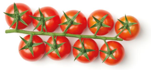 Commercio frutta e verdura Lo Casto Srl, distributore e mediatore